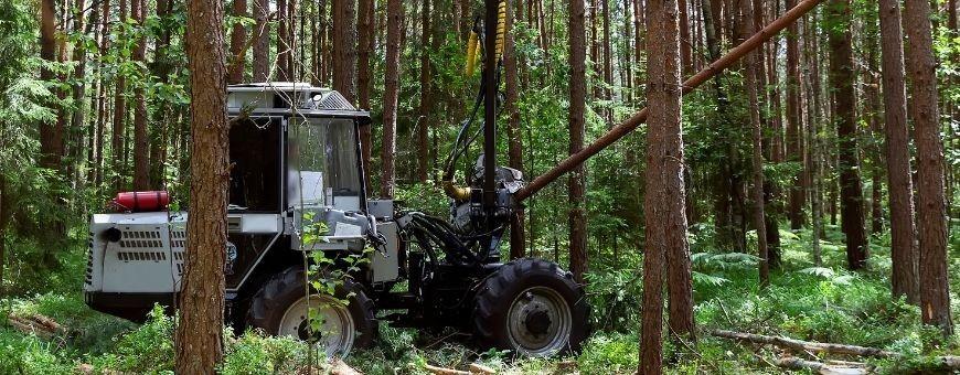 Maszyny leśne - Danrol